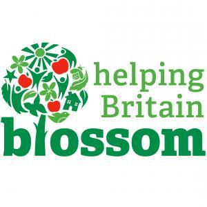 Helping Britain Blossom