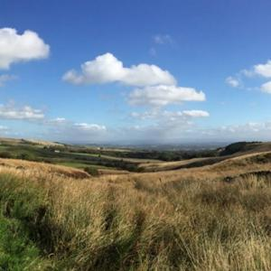 Smithills landscape